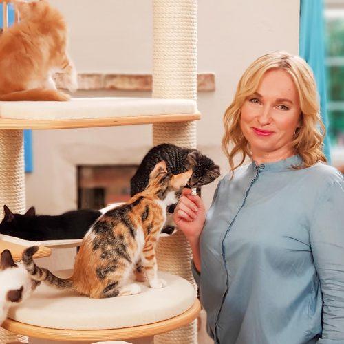 Katzen-Kita Kachel